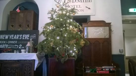 Pub area with Christmas tree - Picture of Windmill Clapham, London ...
