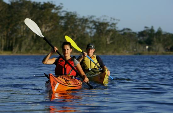 Bay and Beyond Sea Kayak Tours