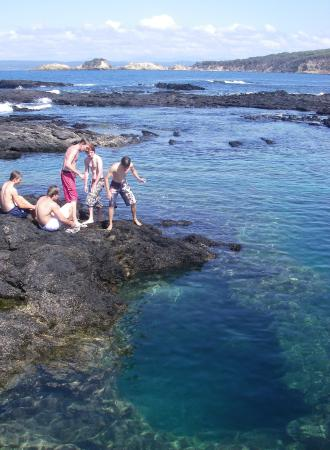 Bay and Beyond Sea Kayak Tours: great swimming hole