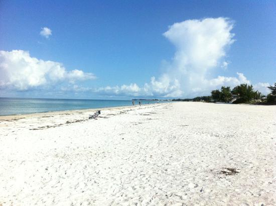 Best Beaches In Sarasota Travel Guide On Tripadvisor