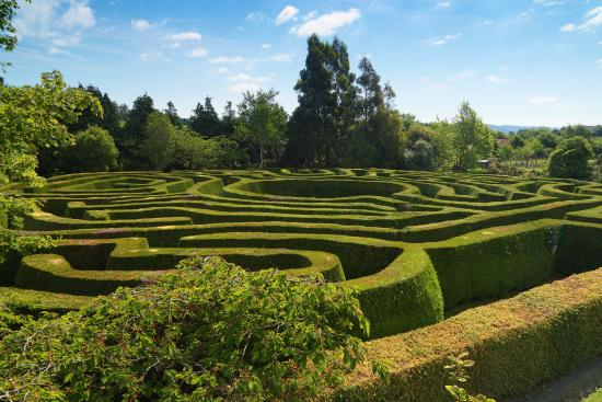County Wicklow, Ireland: Greenan Hedge Maze