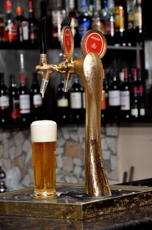 The Elkan Terrace: South African Draught Beer