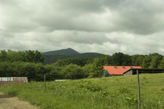 Apple Hill Farm: View from the top of the hill - 4100' above sea level!