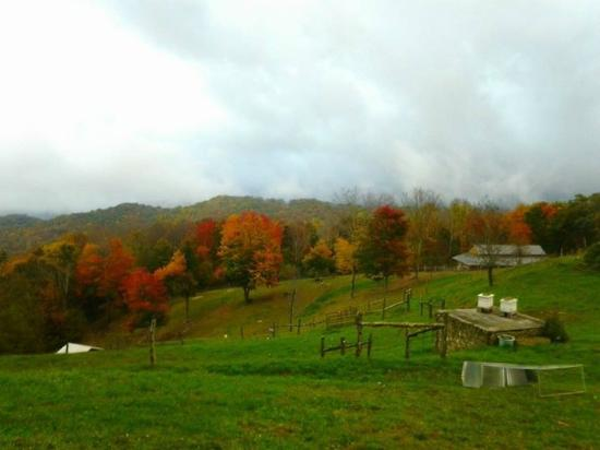 Apple Hill Farm: Even in the clouds, the view to the bottom of the property is stunning!