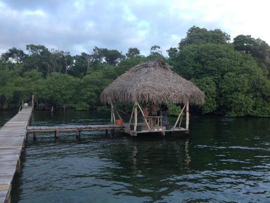 Bocas Villas: BBQ area
