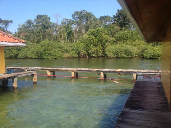Bocas Villas: Back Dock area