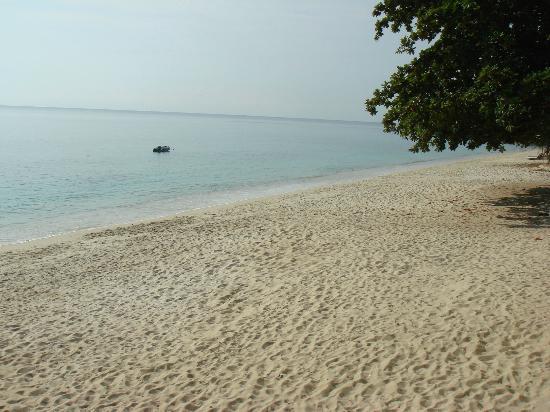 The Cottage@Samui: la plage