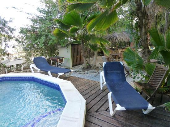 Tropical Inn Bonaire : Liegen - sauber?