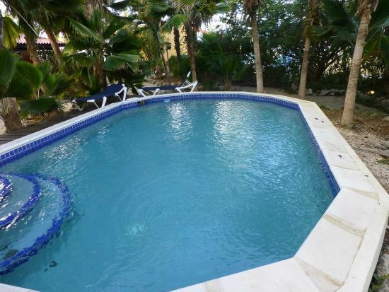Tropical Inn Bonaire : Poolrand mit Kot - sauber?