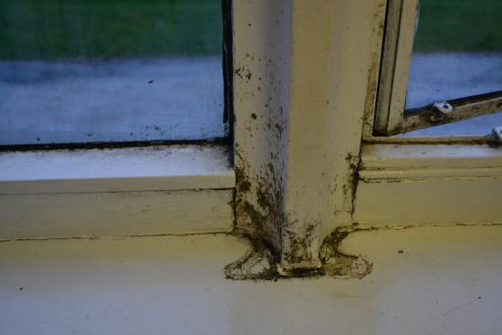 YHA Ilam Hall: dirt window, but doesn't matter