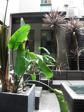 Vulcan Hotel: patio