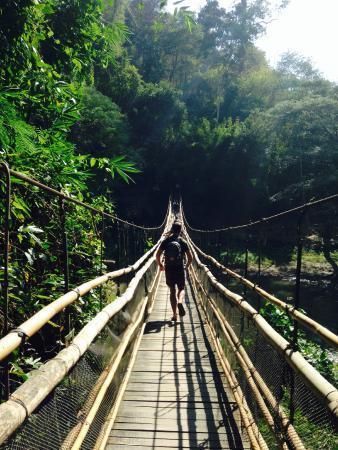 The Elephant Training Center Chiang Dao: shaky bridge to get to the elephant area