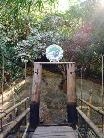 The Elephant Training Center Chiang Dao: entrance of the elephant torture center...
