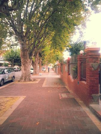 Backpack City and Surf: Leafy street