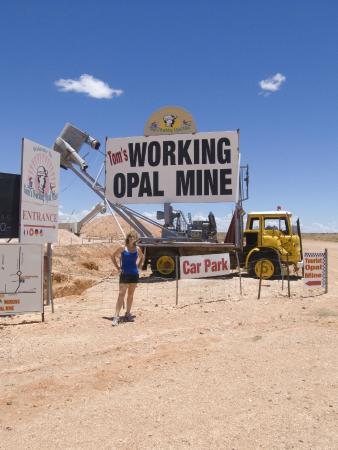 Tom's Working Opal Mine