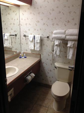 Best Western University Inn & Suites: Bathroom