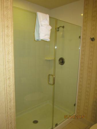 The Inn at Charles Town: Bathroom Shower