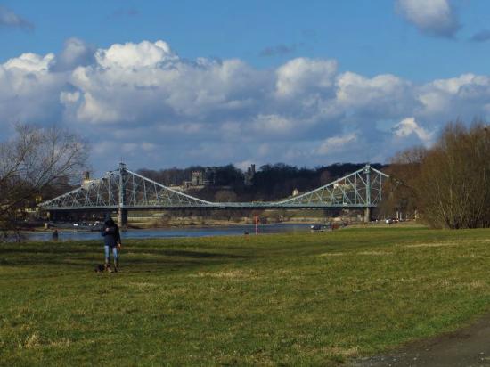 Blaues Wunder (Loschwitzer Brücke): Schönheit in Stahl: Blaues Wunder