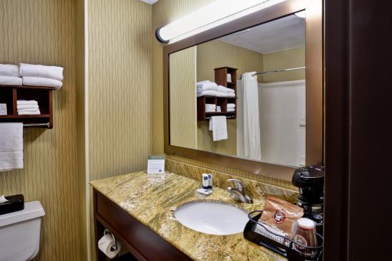 AmericInn Hotel & Suites Kalamazoo: Guest Bathroom