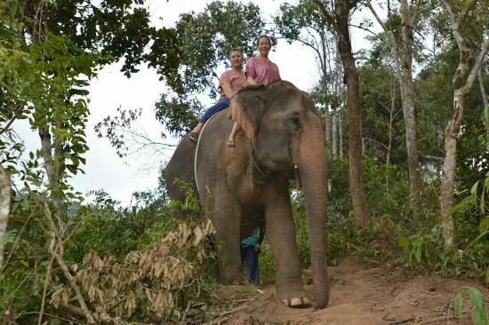 Chiangmai Mahout Training Centre - Day Tours