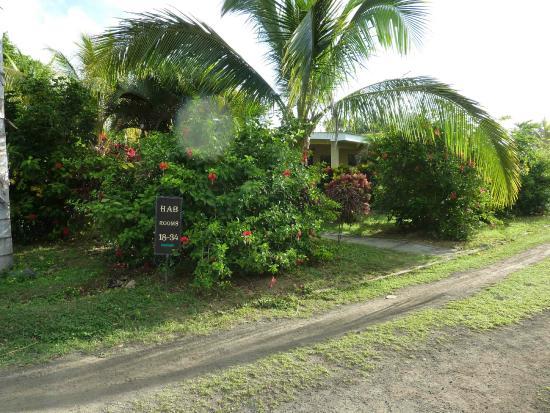 Hotel Charco Verde: Weg zu den neuen Bungalows