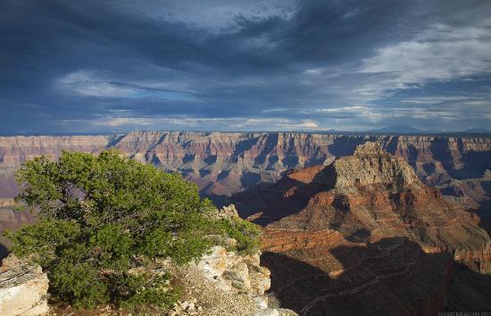 Grand Canyon North Rim : North Rim