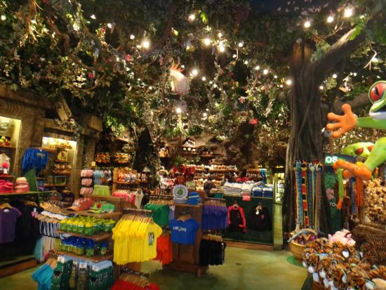 Disney Springs Rainforest Cafe Booking