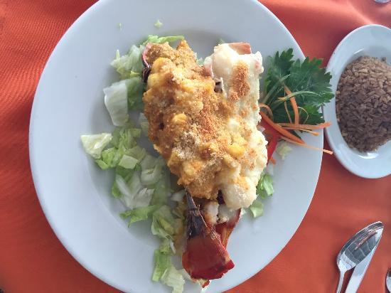 Niko's Restaurant: Excelente lagosta