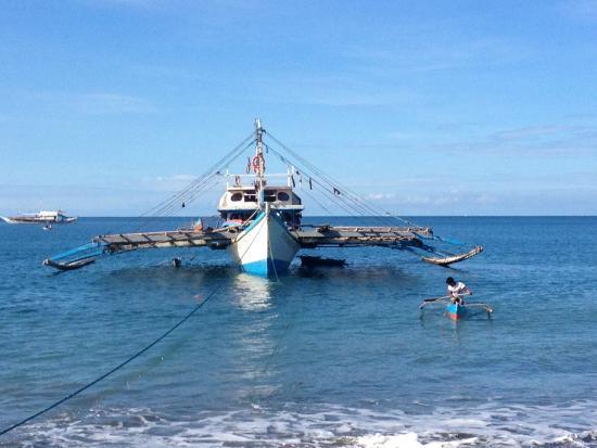 Sikatuna Beach Hotel: bateaux