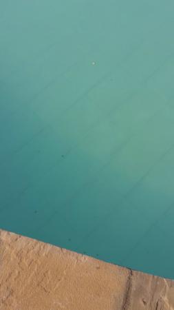Torit, Sør-Sudan: The bugs in the pool.