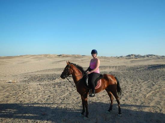 Gamila Stable Club Horse and Camel Riding: Speedy little Sukkar