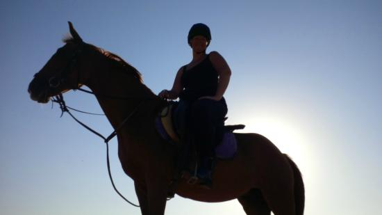 Gamila Stable Club Horse and Camel Riding: Shakira and the sunset
