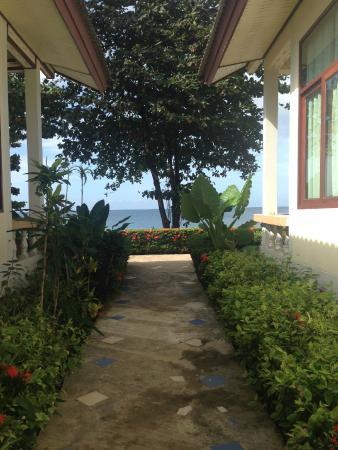 Amantra Resort & Spa : Garden alley
