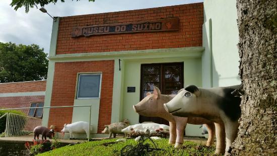 Swine Museum