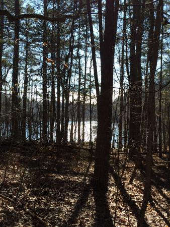 Madison County Nature Trail-Green Mountain : Pure Beauty