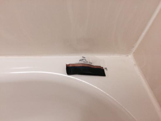 ريد رووف بلس+ بالتيمور نورث - تيمونيوم: A wrapper kindly left for us after room cleaning, but no shampoo, soap, or fragments of our bar 