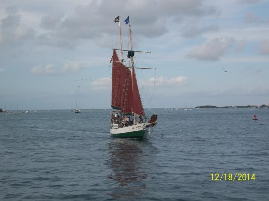 Pelican Cay Harbor Campground and Marina : Pirates of the KEYS