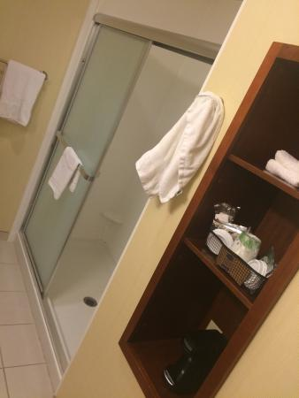 Hampton Inn & Suites Riverside/Corona East: Bathroom