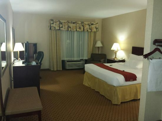 Holiday Inn Express Hotel & Suites Harriman: Room