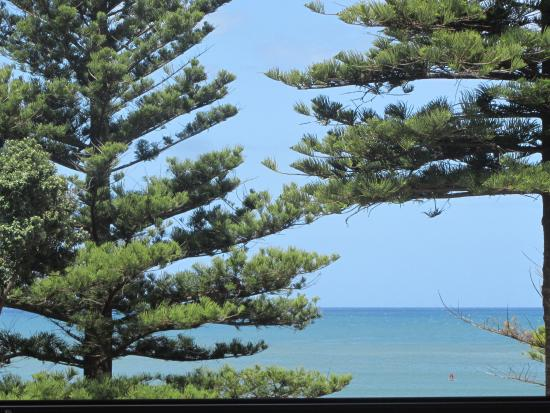 Scorched: Lunch with a view