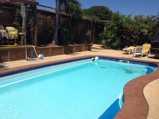 Picture of ozzie pozzie backpackers port for Salt water pool