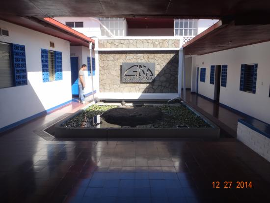 GM Granada Hostel: View fromt the lobby + turtle pond