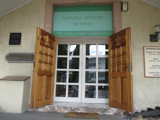 Seychelles Natural History Museum: 入り口