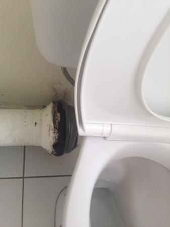 Kupari Boutique Apartments : Toilet