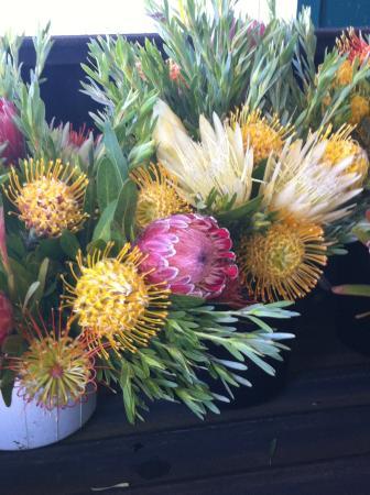 Waimea Homestead Farmers Market: Protea of all kinds can be found. Beautiful!