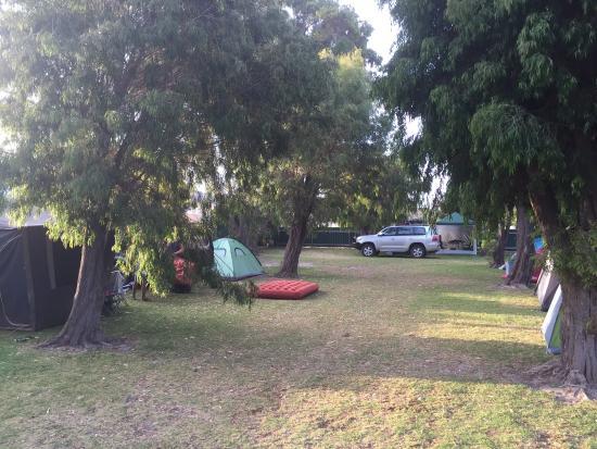 Bathers Paradise Caravan Park: Tent land