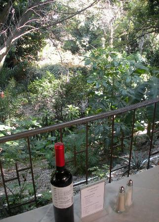 El Rincon del Viejo: un environnement boisé