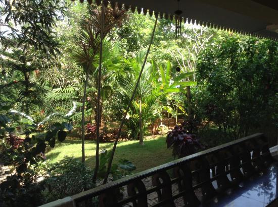 Mango Villa: Вида на сад