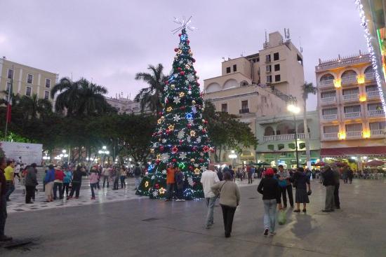 Veracruz Centro Histórico: Сокало вечером