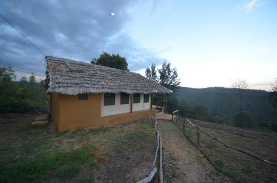 Ngorongoro Forest Tented Lodge: esterno capanna